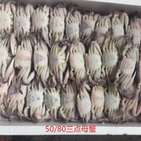 批发60g-80g冷冻野生三点蟹母蟹,三角母,蟹肉饱满