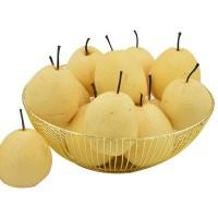 当季陕西酥梨果园现摘贡梨带箱10斤当季脆甜蜜梨水果现货雪梨批发