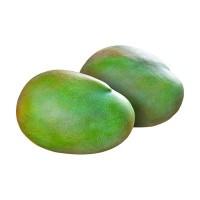 凯特芒 四川攀枝花凯特芒果应季新鲜热带水果批发一件代发