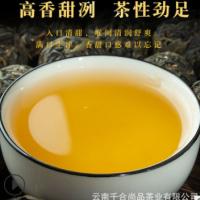 现货批发 大雪山龙珠 云南普洱茶生茶 散装春茶 厂家直发