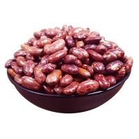 芸豆种籽豆角种籽四季菜种籽蔬菜种孑春季秋冬农花芸豆种子