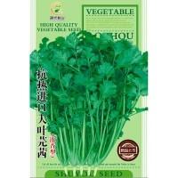 菜园蔬菜种子抗热进口大叶芫茜香菜30克阳台院子菜籽厂家批发