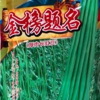 批发蔬菜种子 华赣翠绿长豆角 基地 菜园 菜场种子 400克厂家供应