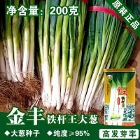 高白大葱种子大葱籽蔬菜种子批发菜种菜籽种子公司
