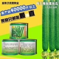 丝瓜种子丝瓜籽丝瓜种籽蔬菜种子批发菜种菜籽菜种子公司四季播种