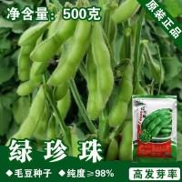 毛豆种子毛豆籽青黄豆种子蔬菜种子批发菜种菜籽种子公司