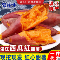 广东湛江特产 红薯新鲜沙地黄心红薯地瓜软糯香甜蜜薯3/5/9斤批发