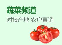 蔬菜背景图